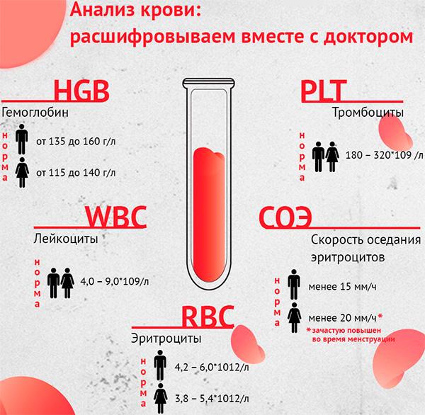 Нужен ли общий анализ крови при туберкулезе?
