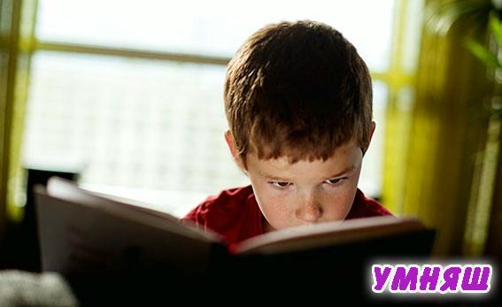 Какие книги любят мальчики