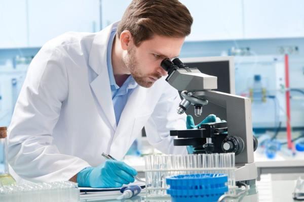 Методика проведения анализа крови на туберкулез ПЦР