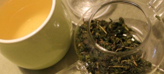 Зеленый чай молочный улун (оолонг): полезные и вредные свойства