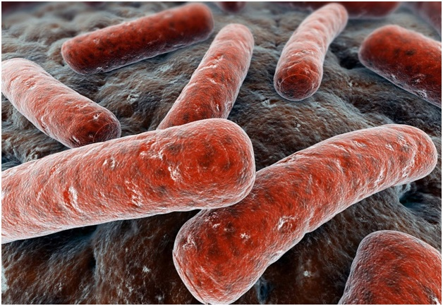 Все, что нужно знать об инкубационном периоде туберкулеза