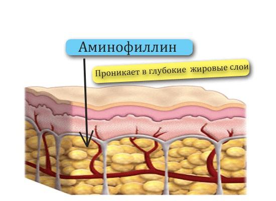 как действует аминофиллин