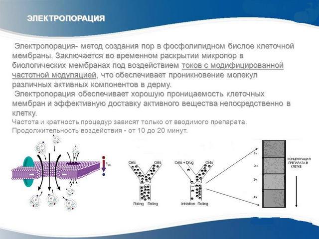 принцип действия электропорации