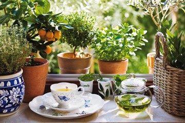 Напиток здоровья: травяные чаи для снижения артериального давления