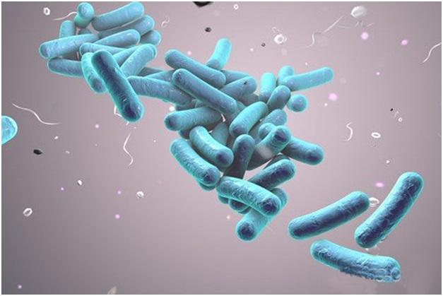 Сколько живут с туберкулезом и как продлить жизнь?