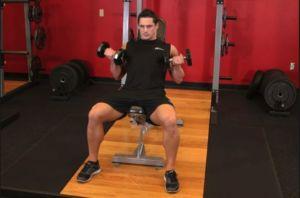 Спортсмен выполняет подъем гантелей сидя